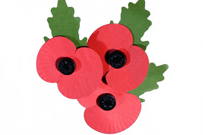 Square Events - A Day with the Poppy Appeal
