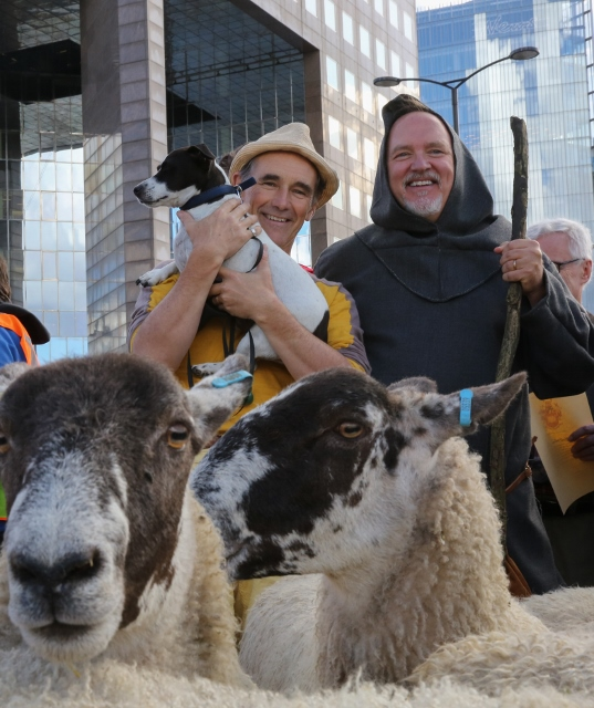 Actor Mark Rylance joins Freeman of the City of London driving sheep over London Bridge, practising their ancient rite and raising money for the Lord Mayor's Appeal. Nigel, who is a Freeman of the City, will open the event and conduct his debut sheep drive