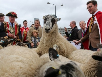 Former Formula One World Champion racing driver Nigel Mansell joined Freeman of the City of London driving sheep over London Bridge, practising their ancient rite and raising money for the Lord Mayor's Appeal