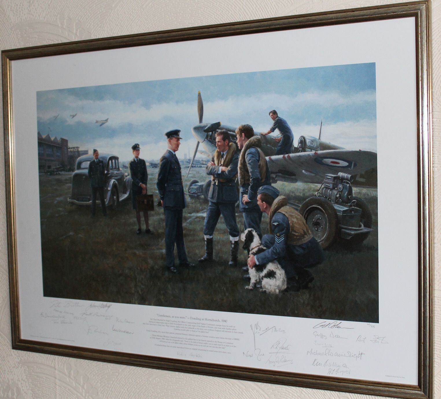 Battle of Britain limited edition print, signed by 22 pilots and aircrew